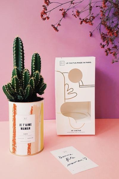 cadeau fete meres 2018 pas cher cactus maman